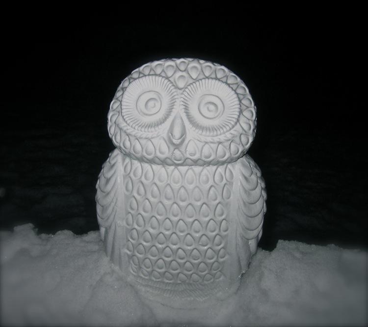 sw snow owl