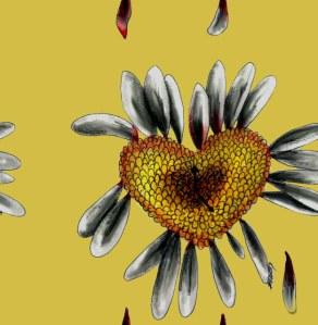 broken-daisy